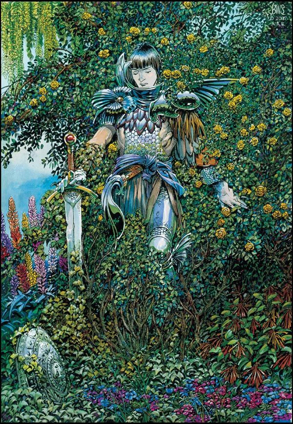Barry Windsor Smith 003